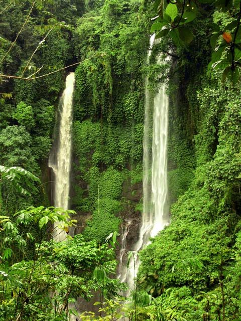 Secret Waterfall In Bali Discover Bali Indonesia Photo Gallery