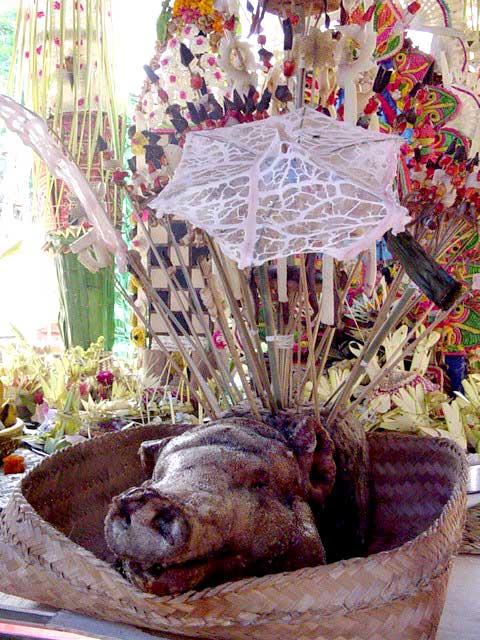 Balinese Wedding Ceremony Discover Bali Indonesia Photo